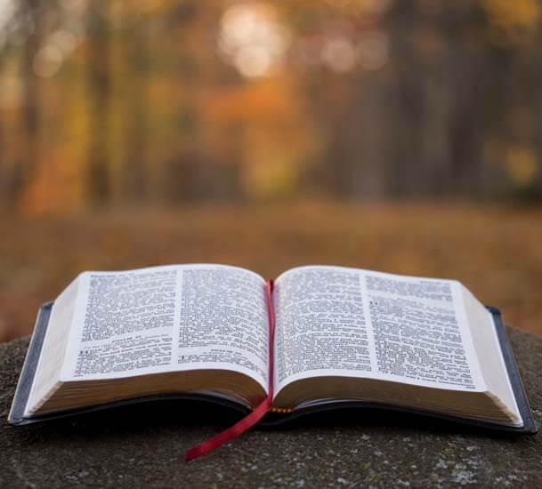sof-bible